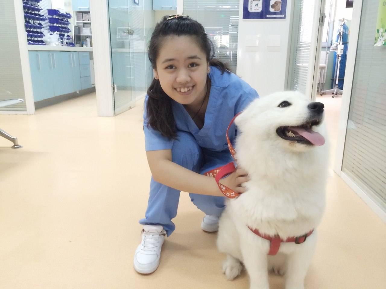 宠物养护与疫病防治专业